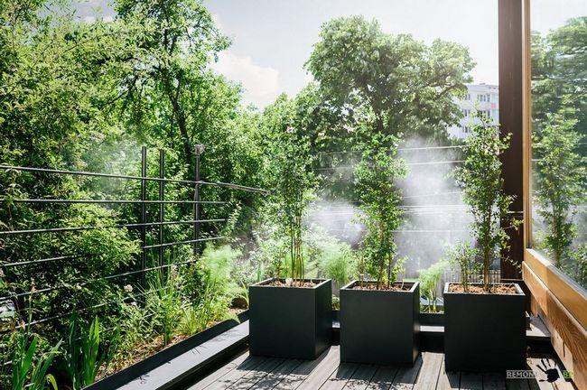 Діжки для рослин правильної форми