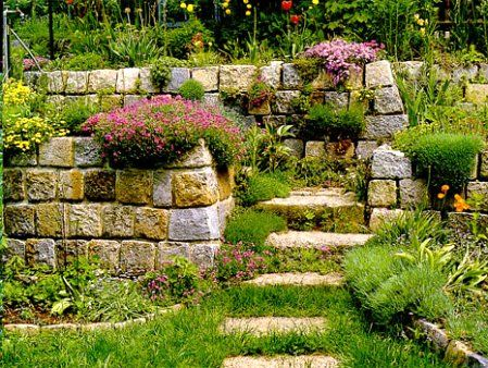 Фото - Альпійська гірка і рокарій на садовій ділянці