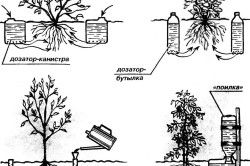 Схема пристрою крапельного поливу