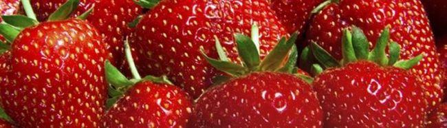 Фото - Багатий урожай полуниці, вирощений в своєму саду