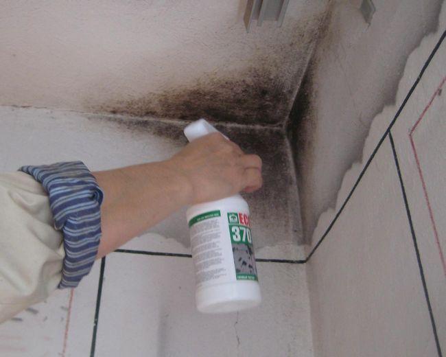 Фото - Що робити, якщо мокне стіна цегляного будинку?