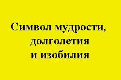 Жовтий колір - символ мудрості, довголіття, достатку.