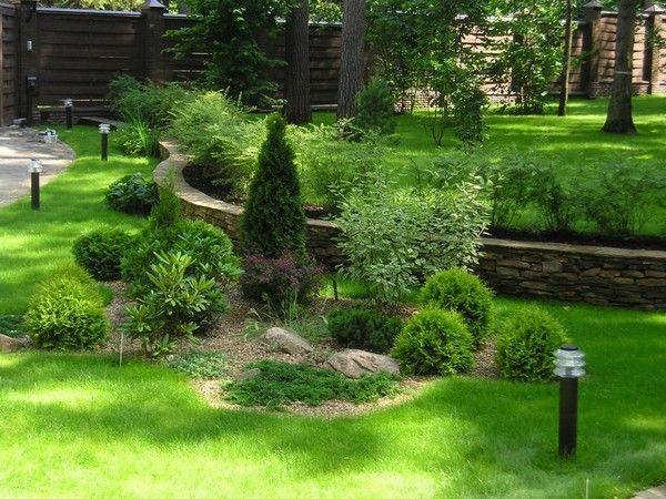 Фото - Декоративні кущі: додаткове прикраса саду