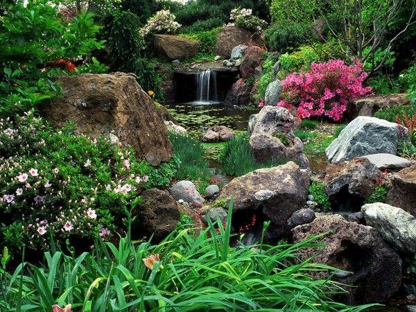 Красивоцветущие чагарники для саду фото