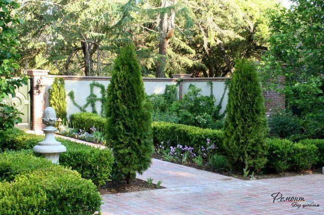 Забір в саду