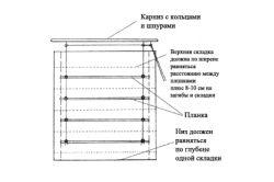 Фото - Дизайн римських штор