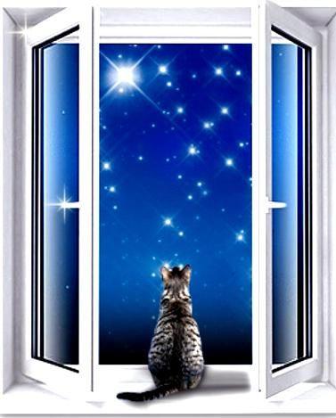 Фото - Гармонійний фен-шуй вікна і двері
