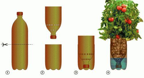 Фото - Гідропоніка - сучасний метод рослинництва