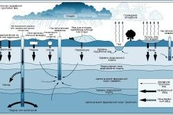 Гідрологічний цикл і джерела зараження ґрунтових вод