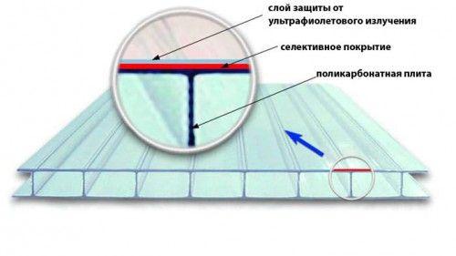 Фото - Стільниковий полікарбонат - найкращий матеріал для покриття теплиць