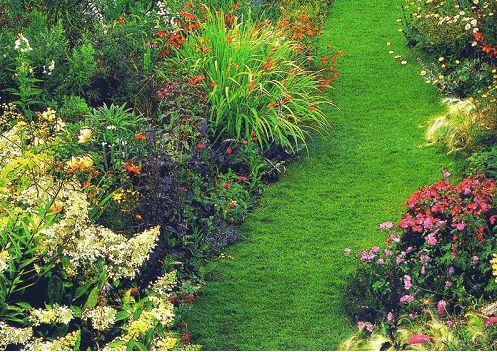 Фото - Мистецтво оформлення дачної ділянки квітами