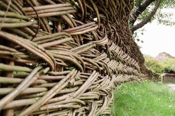 Вербовий тин - найдавніший паркан з чарівними властивостями