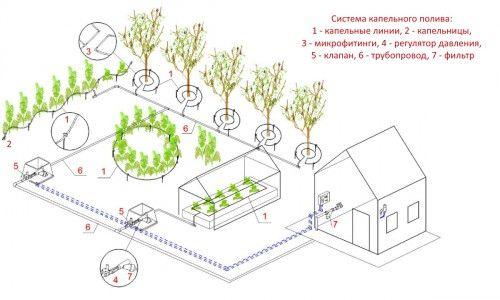 Система крапельного поливу городу