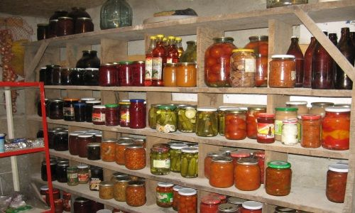 Фото - Як зберігати овочі в погребі