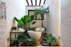 Оновлення ванної кімнати за допомогою кімнатних квітів
