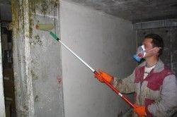 Обробка стін антигрибковим складом
