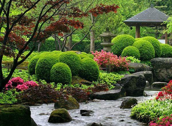 Вибір рослин для японського саду