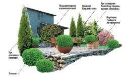 Можлива схема озеленення відкритої веранди