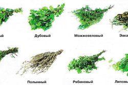 Основні види банних віників