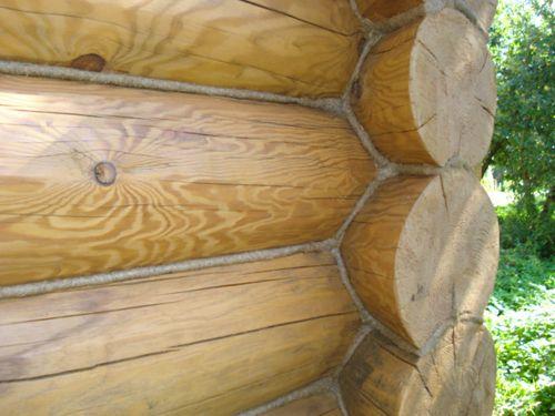 Фото - Як обробити деревину?