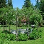 Альтанка з живих дерев
