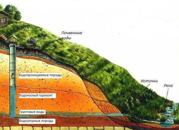 Як визначити глибину залягання грунтових вод на садовій ділянці?