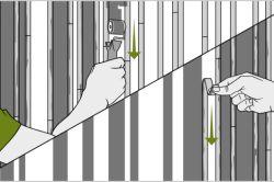 Фото - Як здійснюється розфарбування стін своїми руками