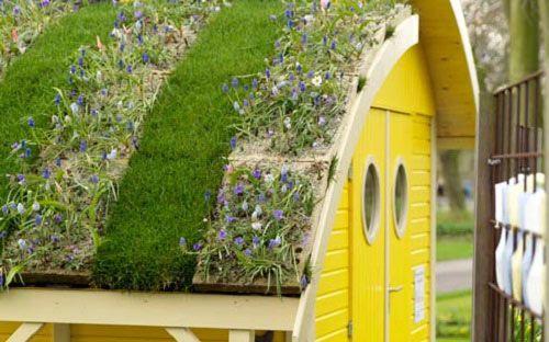 Як озеленити дах?
