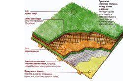 Технологія озеленення покрівлі
