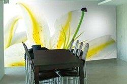 Як пофарбувати стіни ідеально?