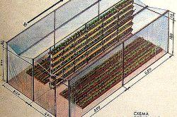 Схема плівковою теплиці для полуниці