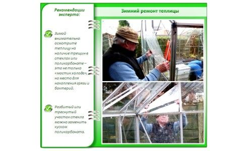 Фото - Як правильно провести підготовку теплиці з полікарбонату до весни