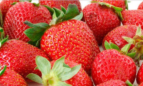 Фото - Як правильно садити полуницю?