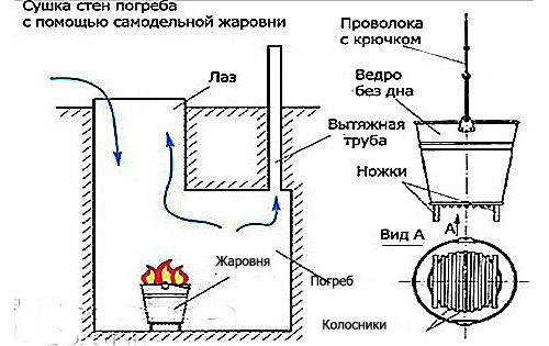 Фото - Як правильно висушити льох?