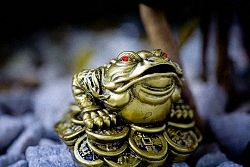 Триногий жаба приносить багатство