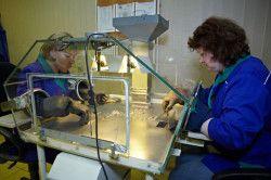 Рентгенолюмінесцентная сепарація сировини (РЛС)