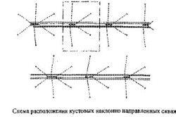 Схема розташування кущових похило спрямованих свердловин