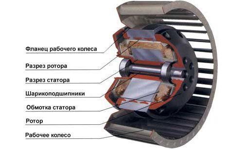 Фото - Як самостійно полагодити електродвигуни?