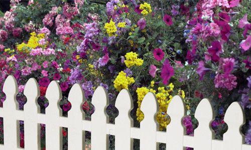 Фото - Як самостійно зробити паркан для клумби