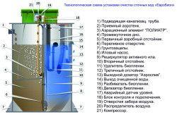 Біологічне очищення септика