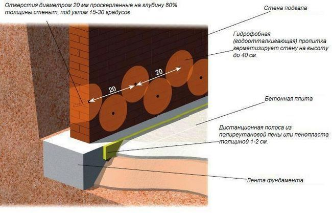 Фото - Як видалити вологість у підвалі