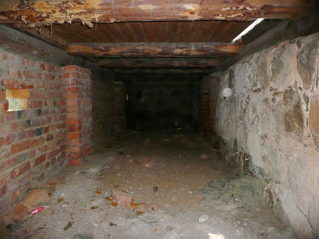 Фото - Як усунути запах в підвальному приміщенні?