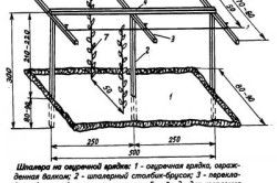 Схема пристрою шпалери для вирощування огірків