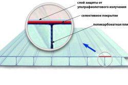 Схема будови листа стільникового полікарбонату