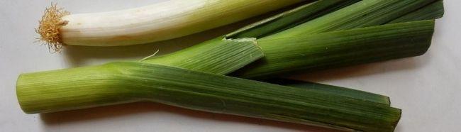 Як вирощувати цибулю-порей з насіння?