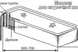 Схема піддону-грядки для огірків з короба