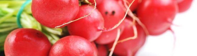 Фото - Як виростити хороший урожай редиски