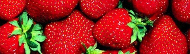 Як виростити полуницю?