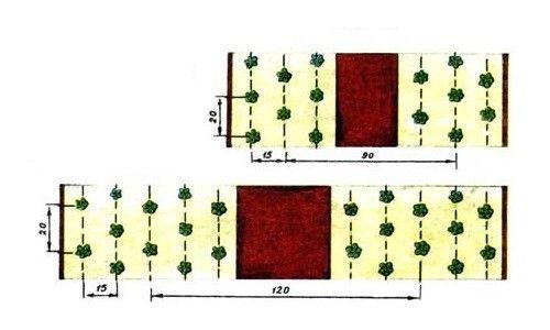 Схема посадки полуниці