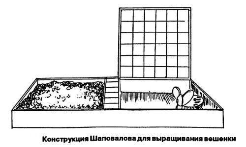 Схема конструкції для вирощування глив